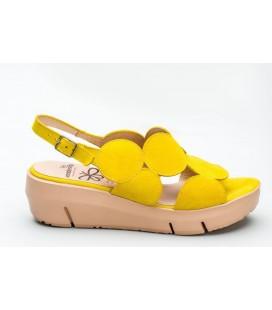 WONDERS D-8210 Ante Limon